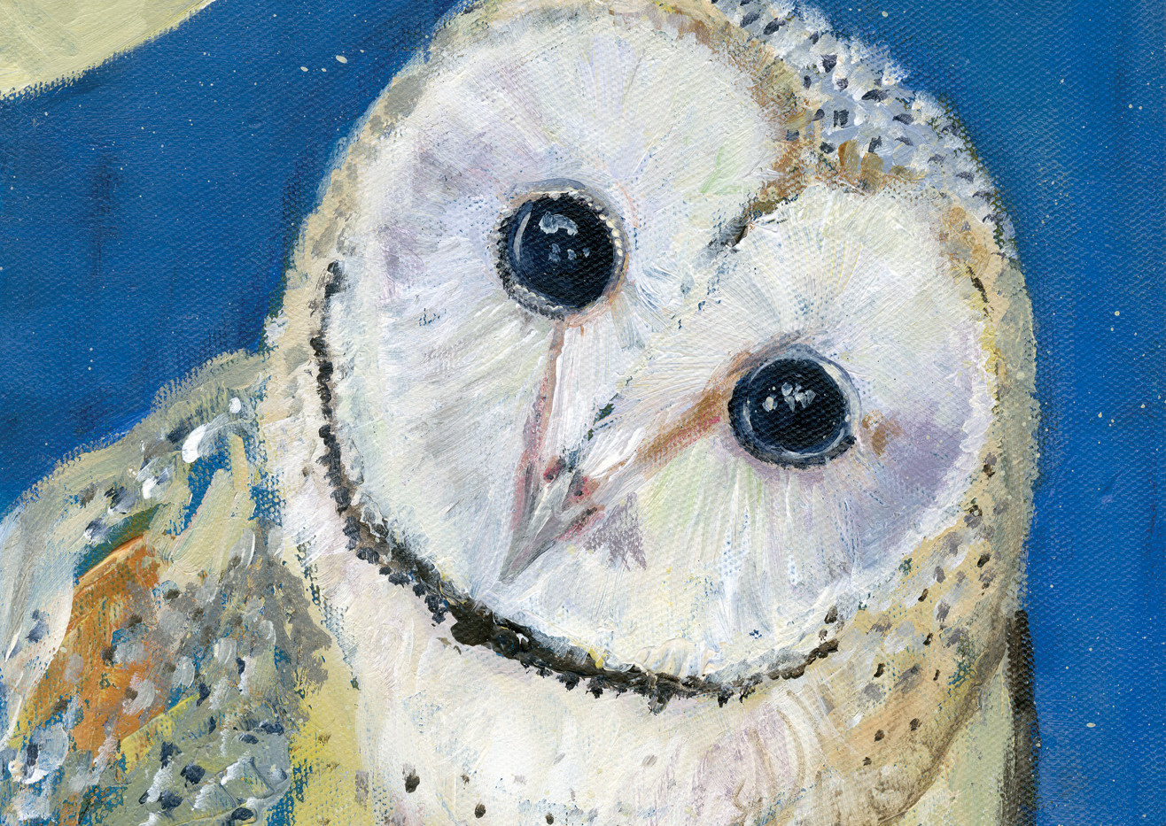 Barn Owl with moon No.9