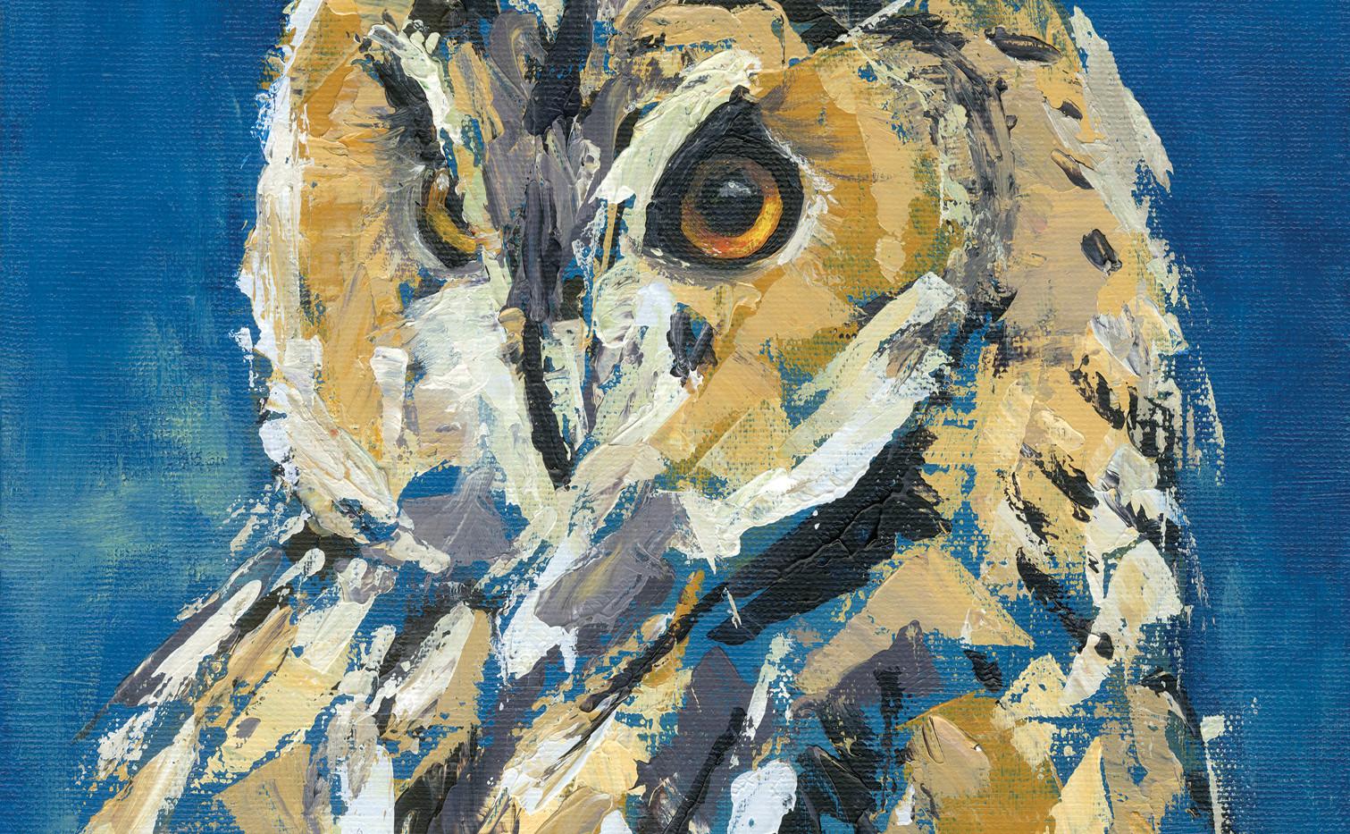 Long Eared Owl No.6