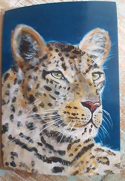 Leopard greetings card