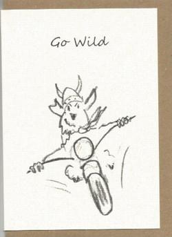 S13 Go Wild