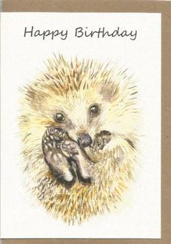 BWW2 Hedgehog