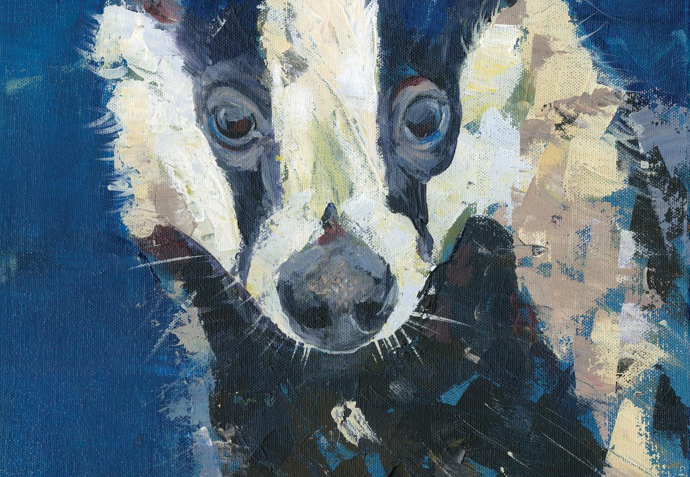 Badger  No.5
