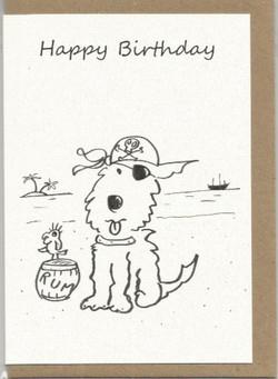 S25  Happy Birthday Matey