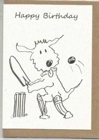 S21 Happy Birthday Cricket