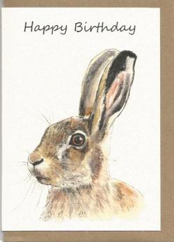 BWW16 Hare