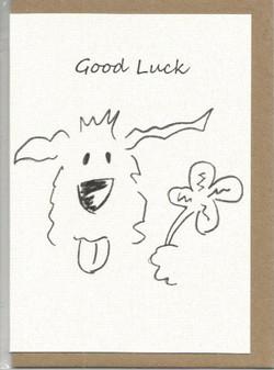 S10  Good Luck