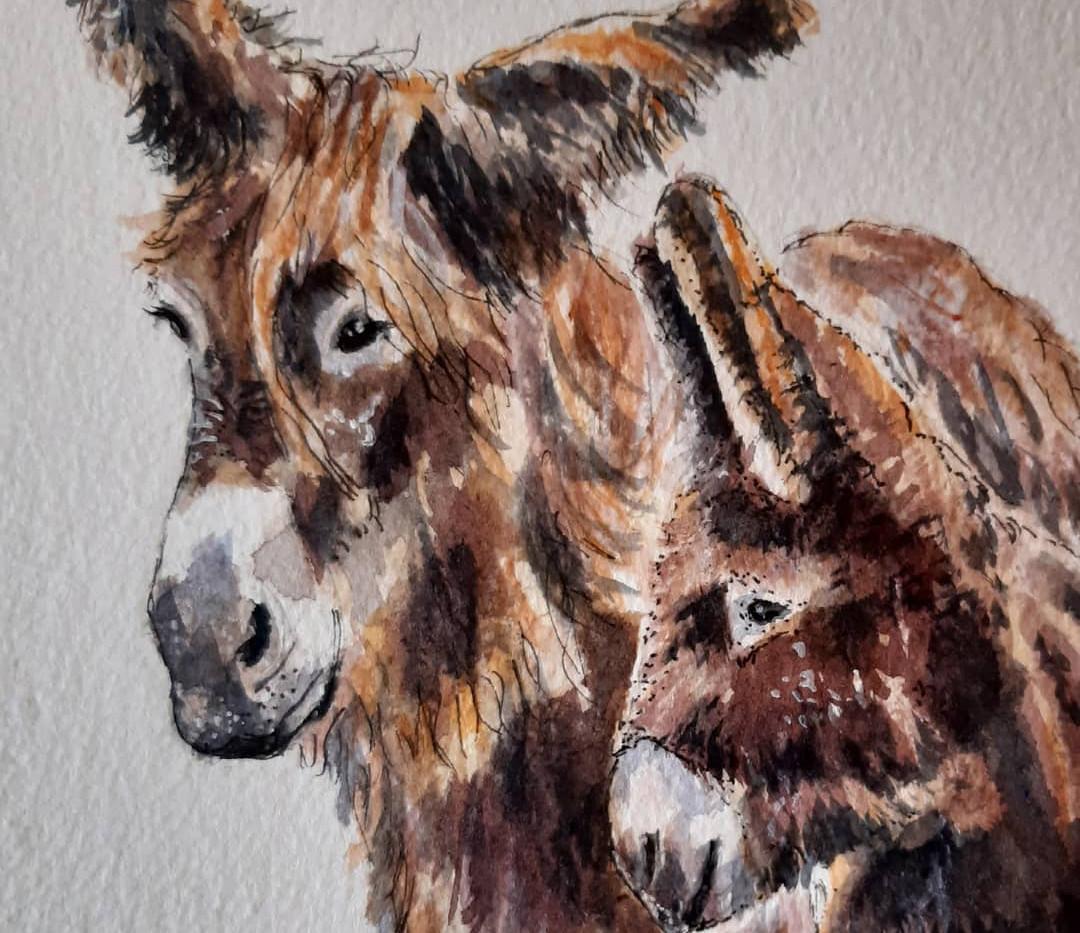 Poitou Donkey and foal