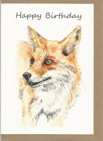 BWW4  Fox