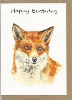 BWW7   Fox