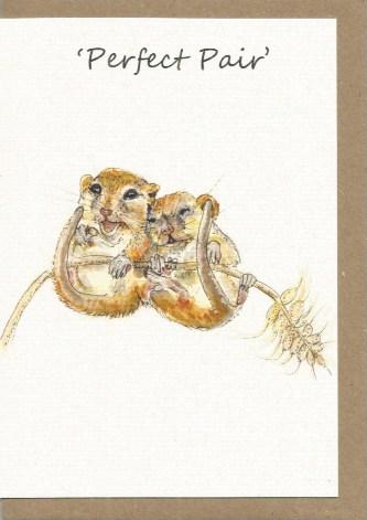 BWW14 Mice