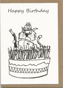 W4 Happy Birthday Fireman