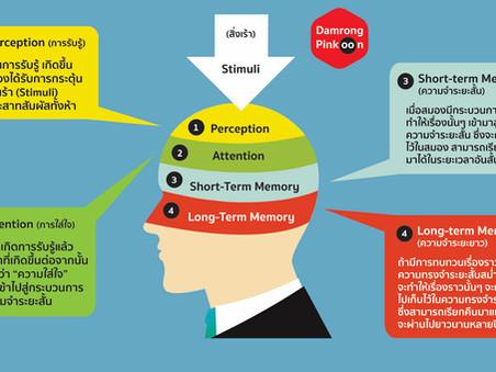 ฝึกสมองได้ ใช้สมองเป็นด้วย Long Term Memory