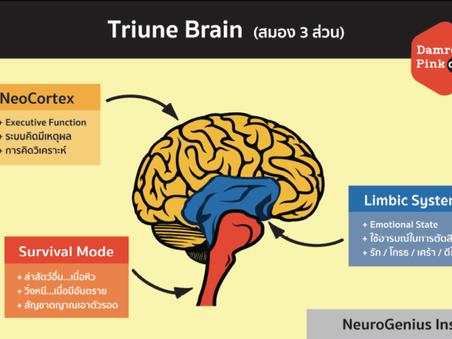 TRIUNE Brain มหัศจรรย์สมอง 3 ส่วน
