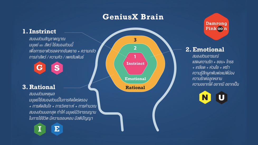สัญชาตญาณ-อารมณ์-เหตุผล สมองของคุณขับเคลื่อนด้วยสิ่งใด