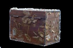 La caja de los misterios de Eva.