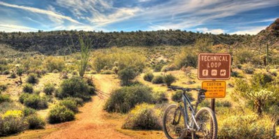 McDowell Mountain Park 2021 Mountain Bike Trip