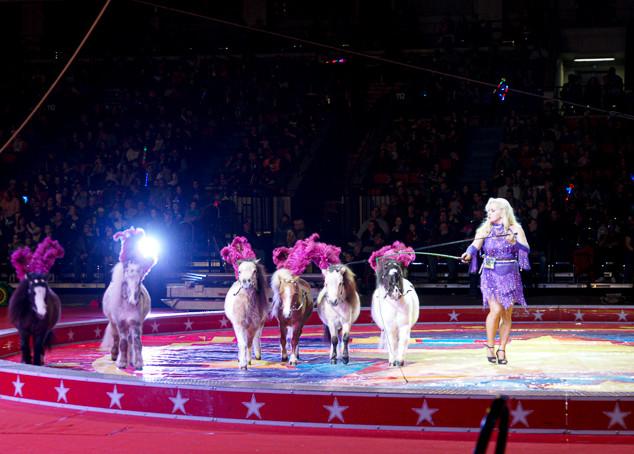 Kosair Circus Act.jpg