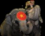Elephant Cut.png