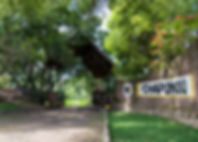 Chapungu-46.jpg