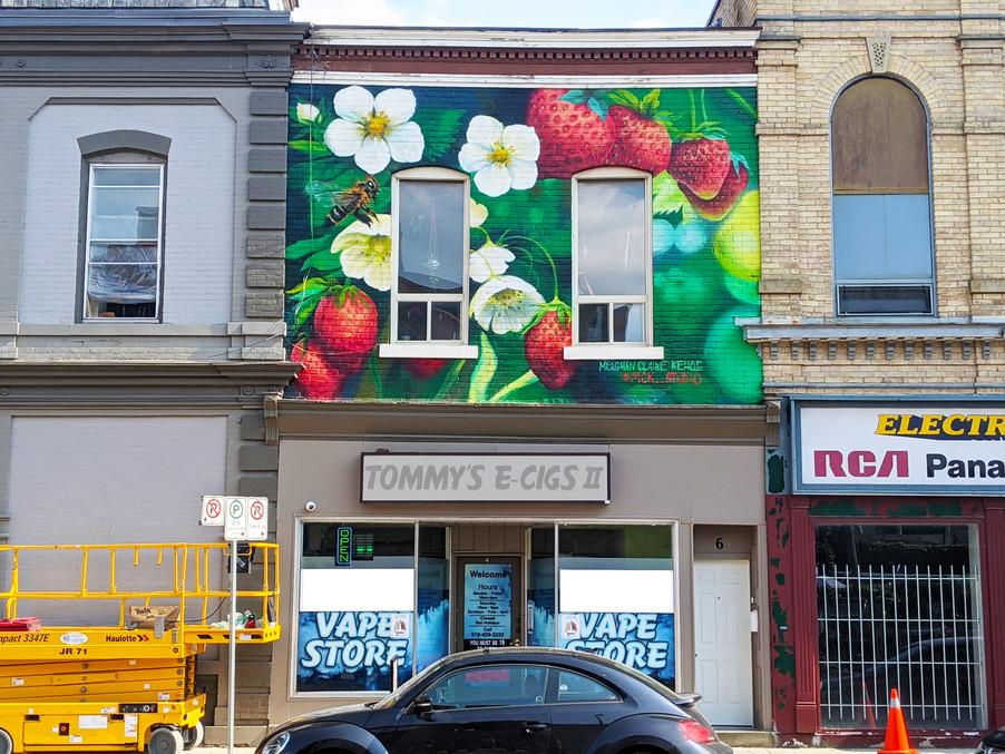 4 Peel St Simcoe_Strawberries Mural_.jpg