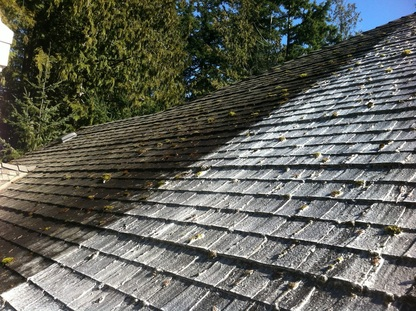 Vancouver Roof Cleaning & Moss Removal - Before