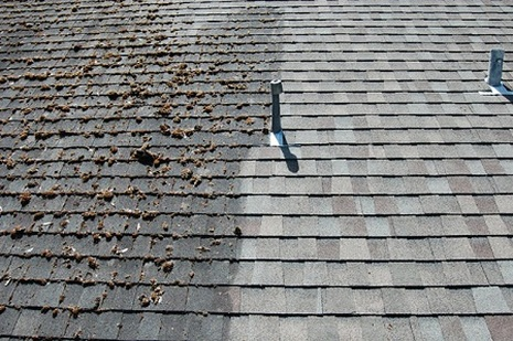 Vancouver Roof Cleaning & Moss Removal - After