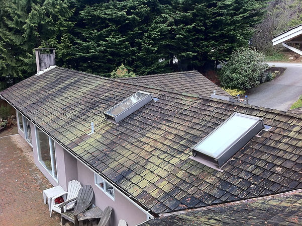 West Vancouver Roof Cleaning - Before