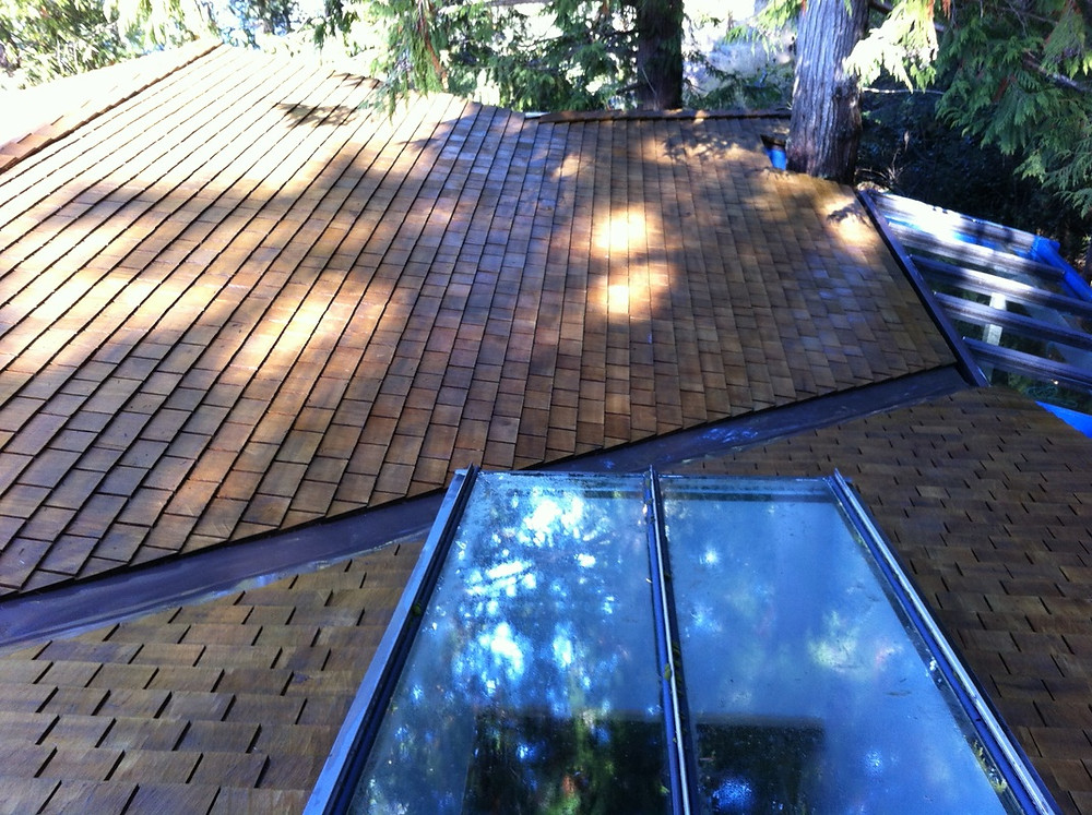 Removed all organic debris from the roof such as leaves, twigs and branches. Then treated the roof with moss & algae treatment