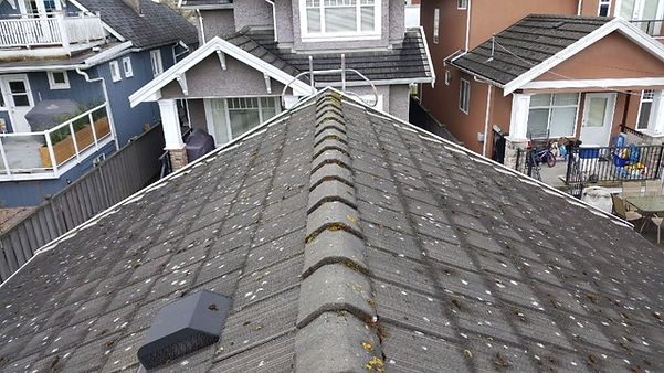 Vancouver Tile Roof Cleaning & Restoration - Before