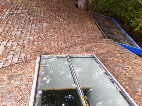 Annual Roof Cleaning - Protect and Prolong the Life of your Roof