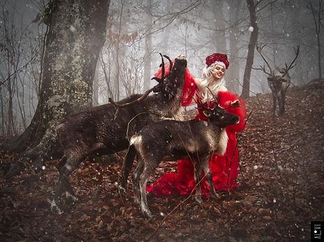 AlVi - Julia & Deer - 1.jpg