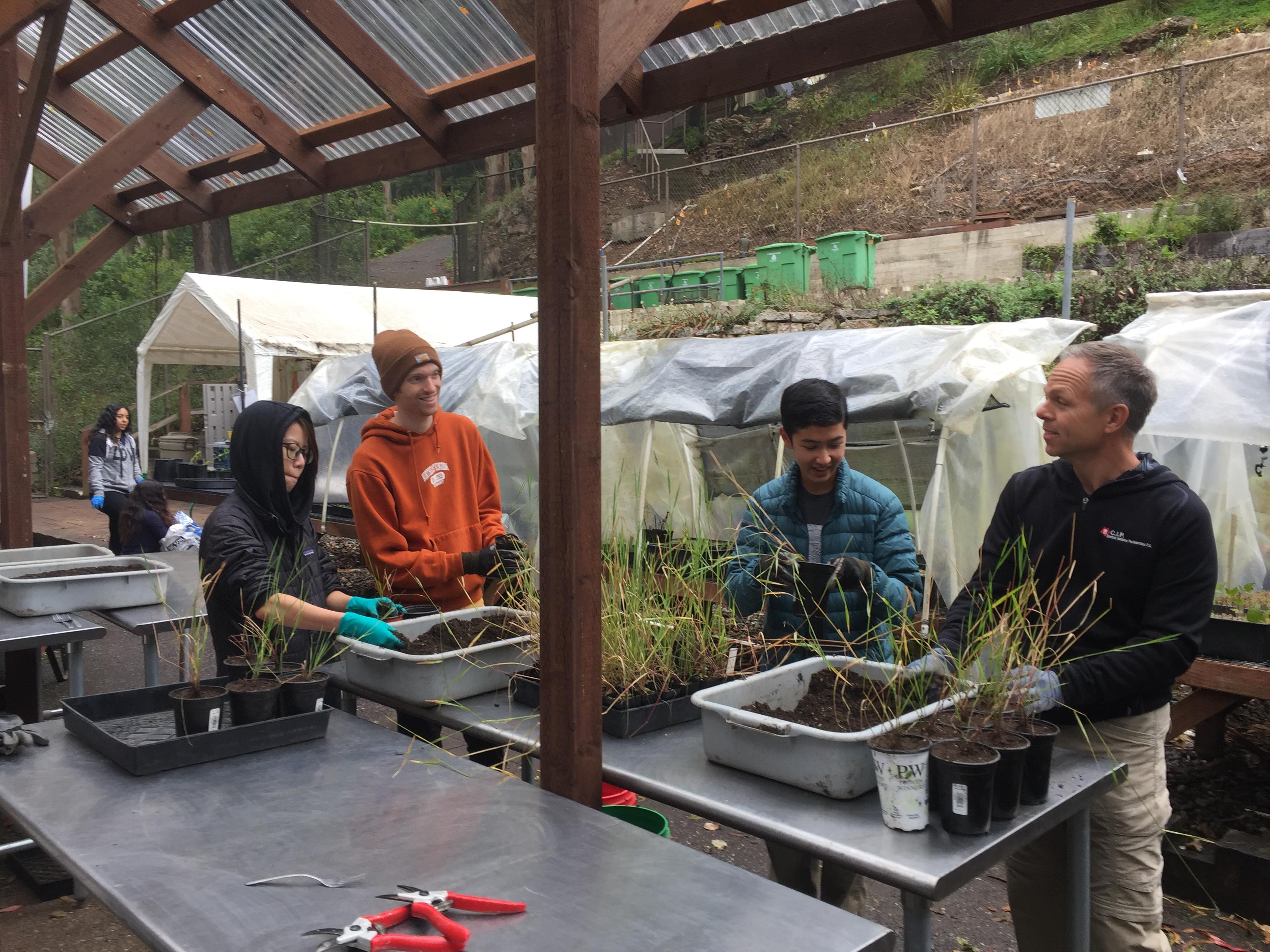 nursery wednesday potting up group work