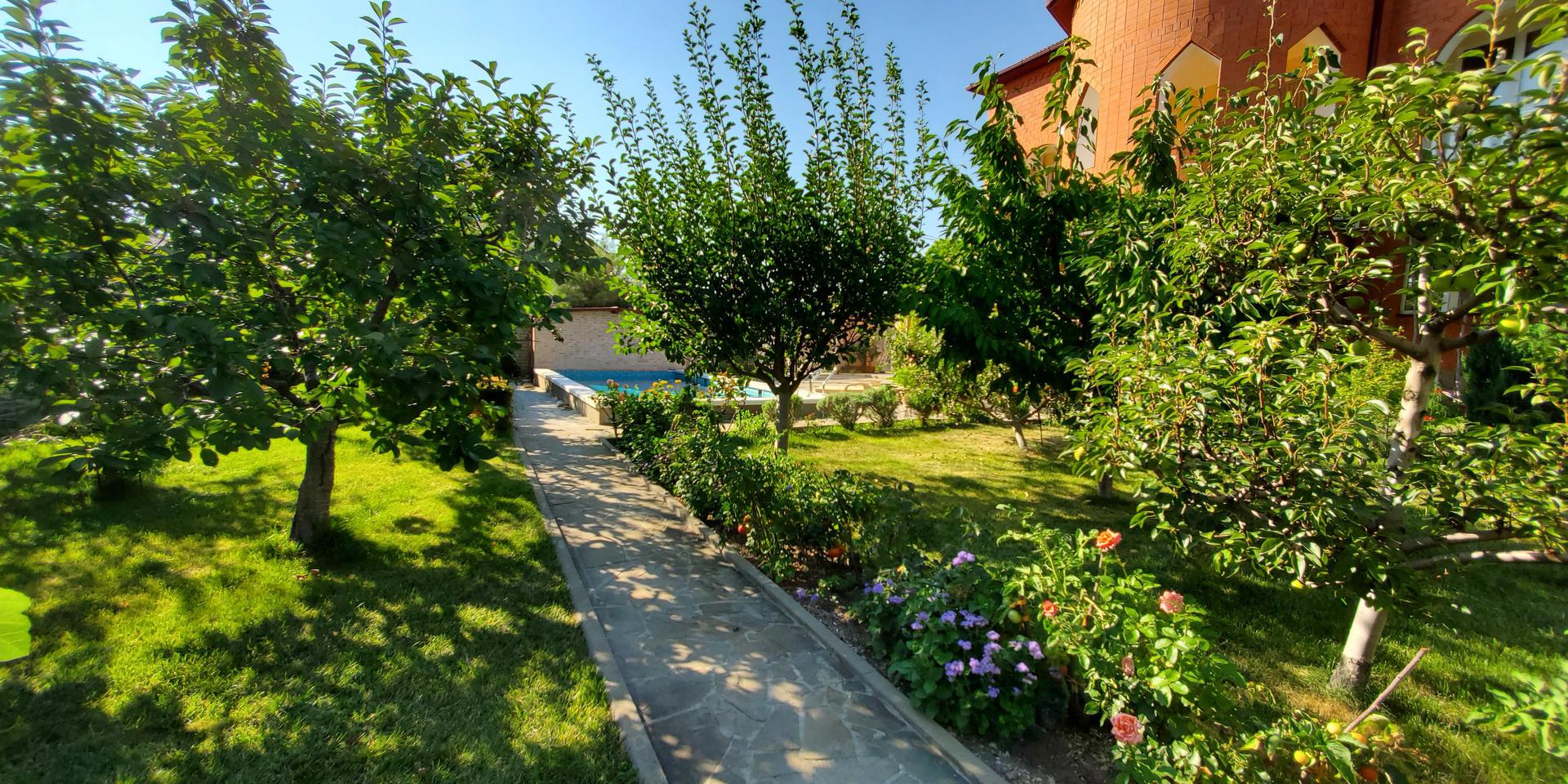 garden & pool - 20200731_165525.jpg
