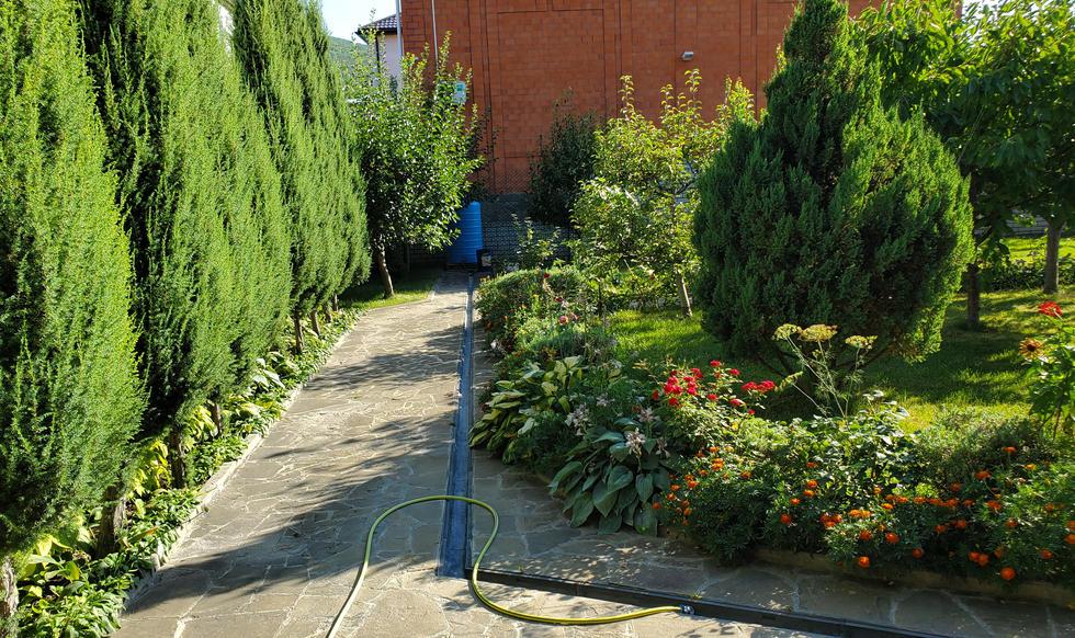 garden & pool - 20200731_165455.jpg