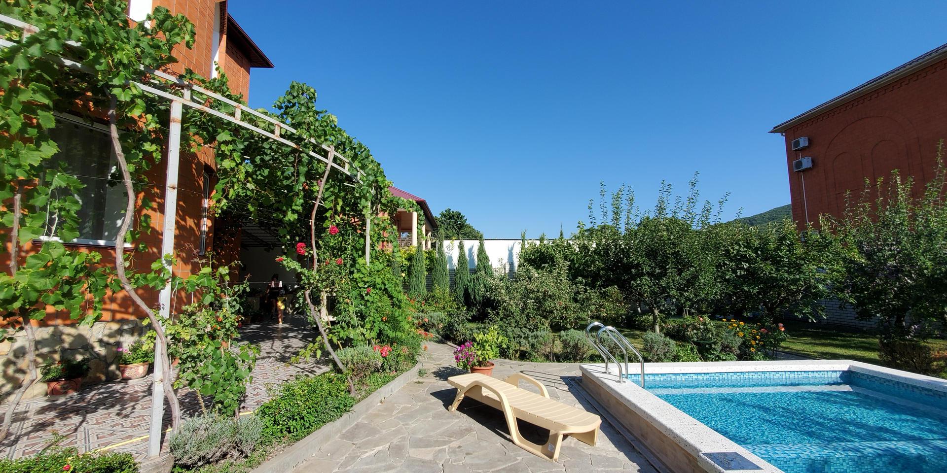 garden & pool - 20200731_164946.jpg