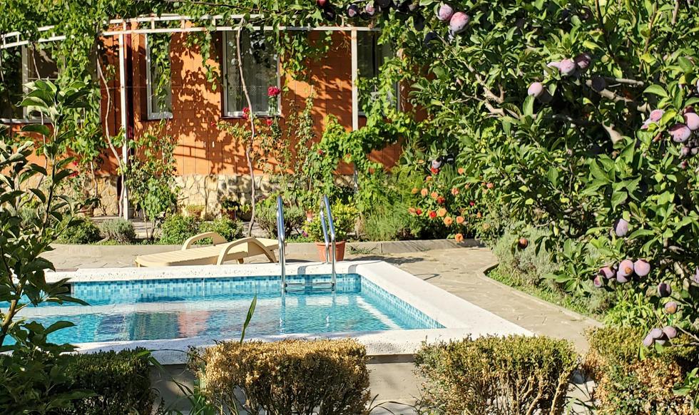 garden & pool - 20200731_165643.jpg