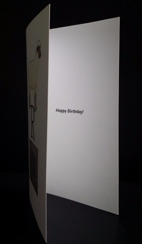 Punny Birthday Card Ewe R Grate Punny Gifts – Birthday Card Delivery Australia