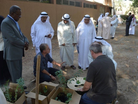 Project 3: Plant 1 million trees in Kuwait Desert Using New Technology