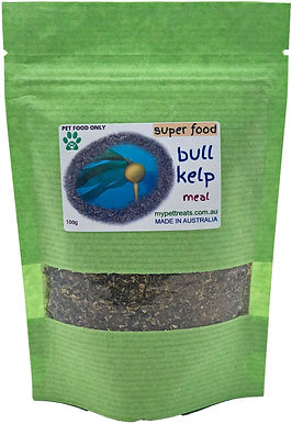 Bull Kelp - (Super Food) Australian