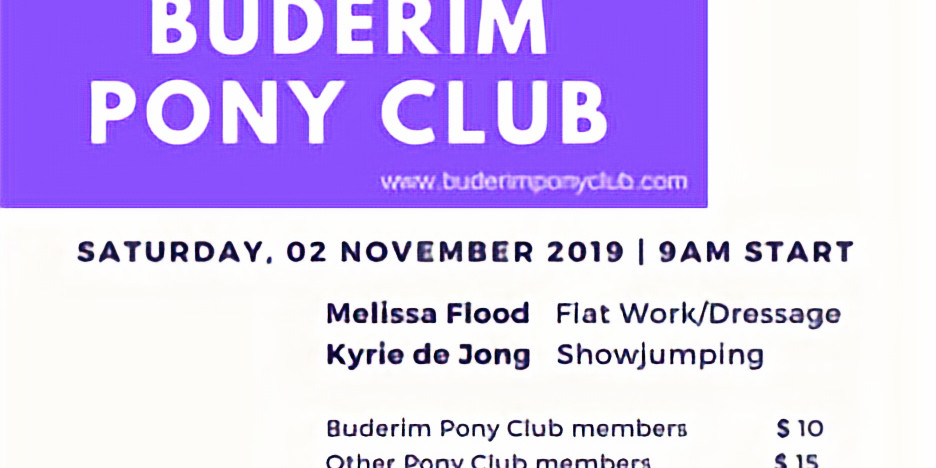 Buderim Horse & Pony Club Open Muster