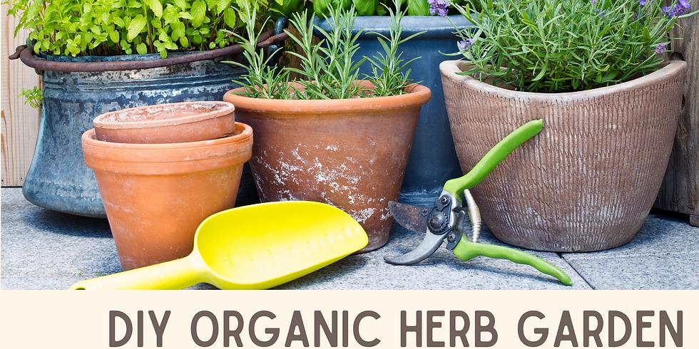 DIY Organic Herb Garden ~ with Adam Bigelow