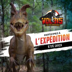 Woodooliparc - Vol 315 : L'ère des dinosaures | Rabais sur activité