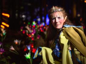 Woodooliparc - Elfia – La nature en lumière (soir) | Rabais sur activité