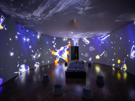 Exposition immersive - Sous les glaces avec Mario Cyr | Rabais sur activité