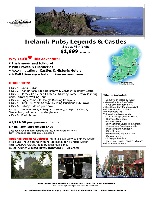 2019_Ireland_1pg_FLYER.PDF-1.png