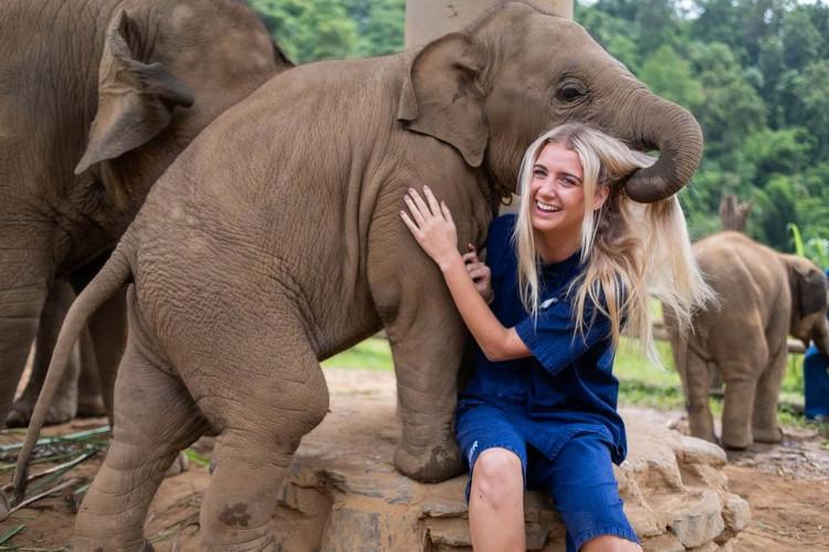 elephant volunteers.jpg