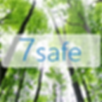 7safe Cloud Suisse Ecologique
