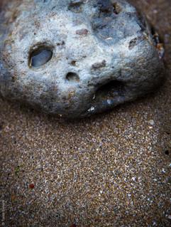Code image 004-10  Titre de l'œuvre LE BEBE PHOQUE BORGNE   Allongé sur le sable, je regarde l'horizon. Je cherche les miens.  Date de création 31 10 2020  Lieu de création Trouville (FR)  Nom de la galerie Les Animaux  Pour commander cette œuvre, cliquez sur « commander » Téléchargez le formulaire en le nommant à votre nom Une fois téléchargé, remplissez-le et renvoyez-le à l'adresse email indiquée.