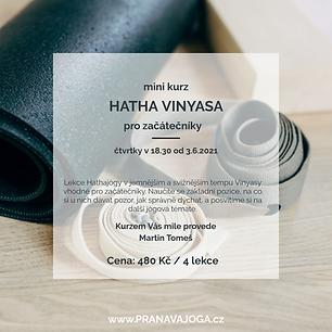 Hatha Vinyasa 18.30.png