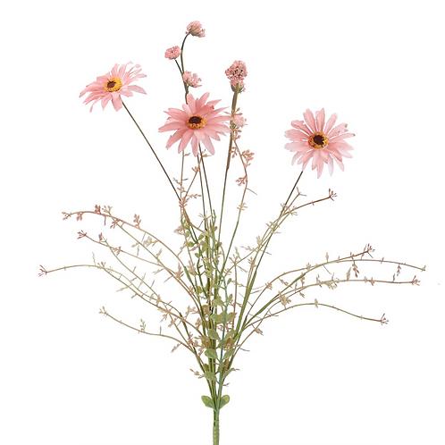 Pink Wild Daisy - Spray 50cm